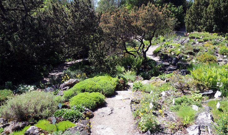 Botanischer Garten Wien Weg (c) STADTBEKANNT Mallmann