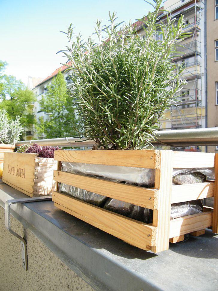 Do It Yourself – Blumenkästen für den Balkon Rosmarin