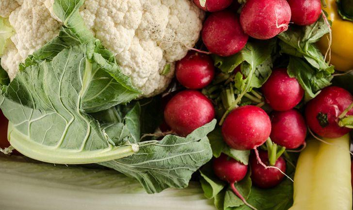 Gemüse Radieschen (c) STADTBEKANNT Mautner