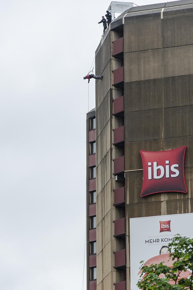 House Running Ibis (c) STADTBEKANNT