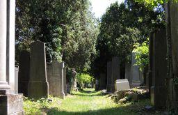 alter jüdischer Friedhof (c) STADTBEKANNT Mallmann