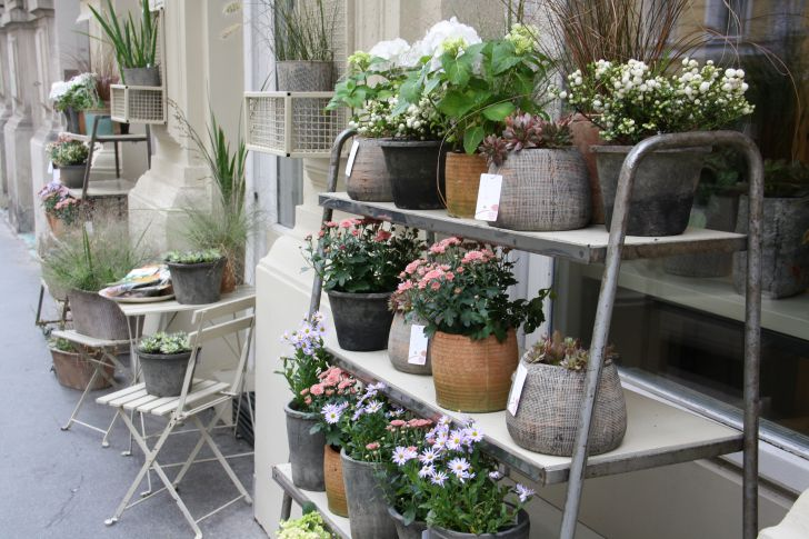 Blumengestalten Geschäft Außenansicht (c) STADTBEKANNT Nohl