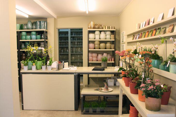Blumengestalten Geschäft Innenansicht (c) STADTBEKANNT Nohl