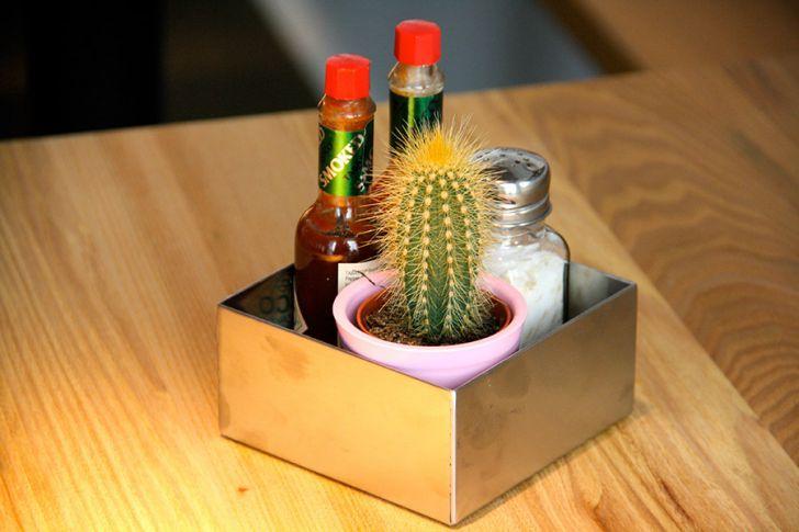 Max & Benito Kaktus (c) STADTBEKANNT