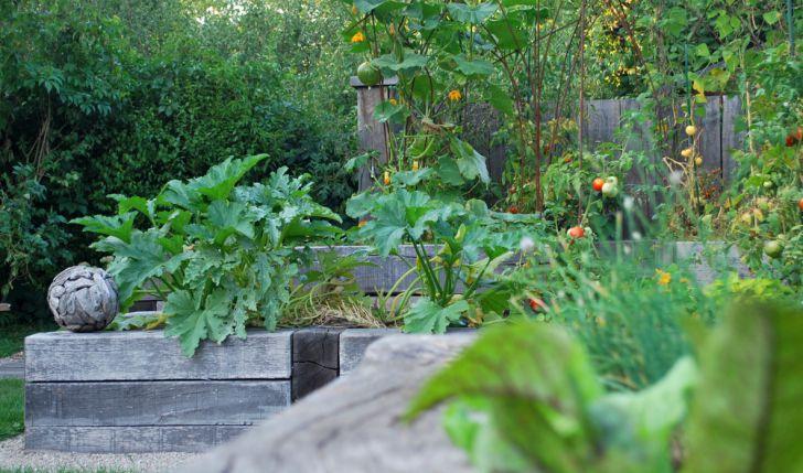 Herbst Garten (c) garteling