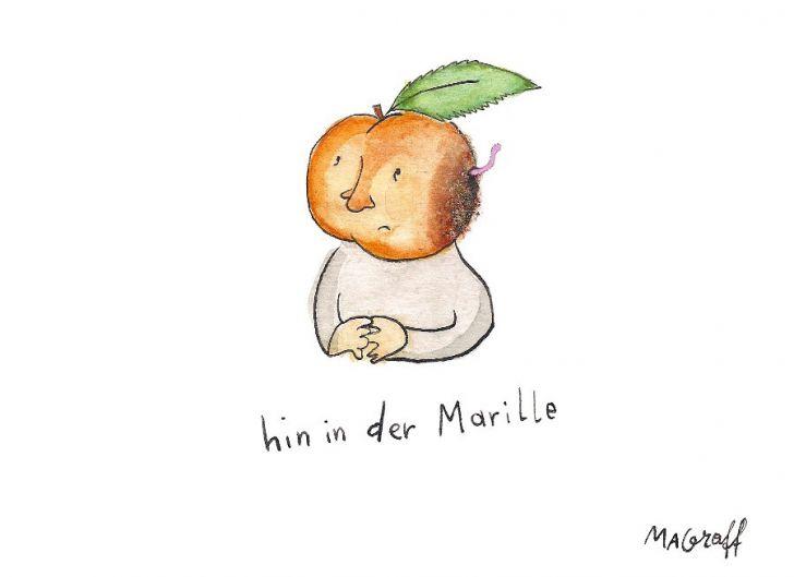 Hin in der Marille - Maria Antonia Graff