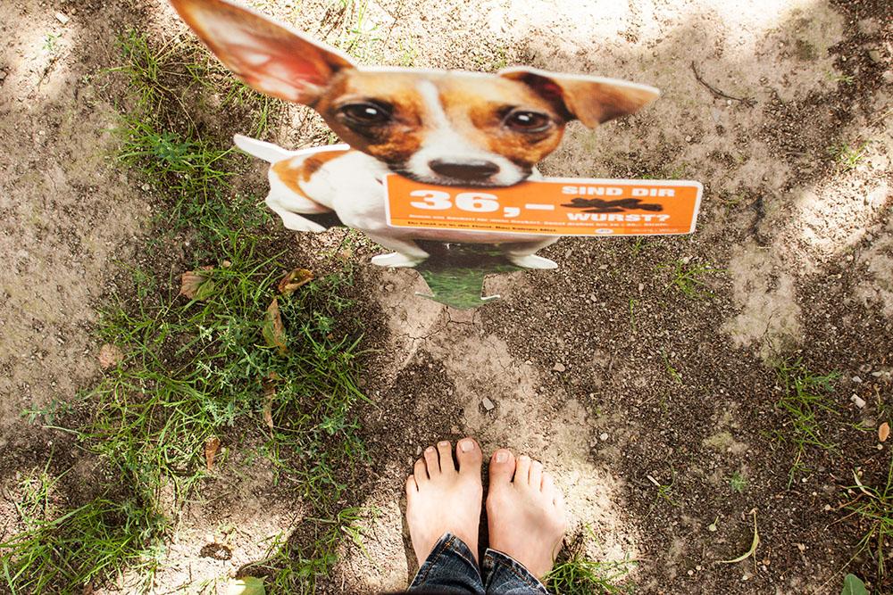Füße Hundezone (c) STADTBEKANNT