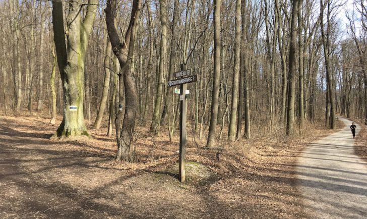 Laufroute 13 - Stadtwanderweg Hameau (c) STADTBEKANN