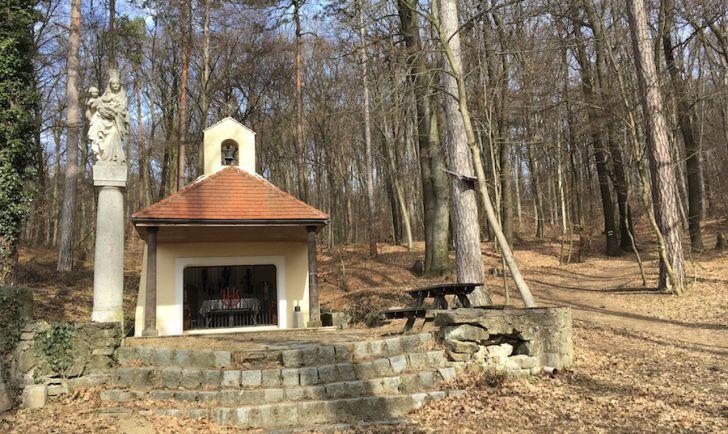 Laufroute 19 - Waldandacht Kapelle Salmannsdorf (c) STADTBEKANNT