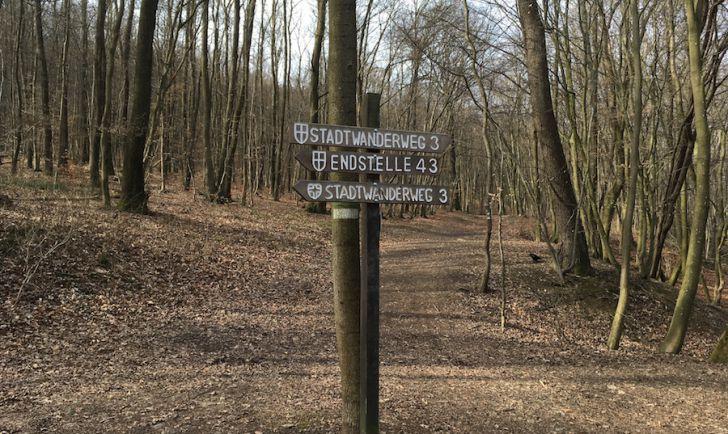 Laufstrecke 5 - Stadtwanderweg 3 (c) STADTBEKANNT