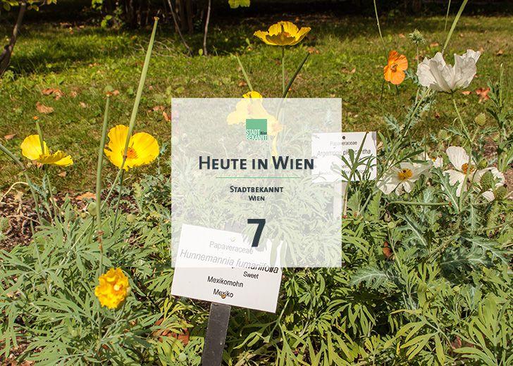 7 Tagestipp Botanischer Garten (c) STADTBEKANNT