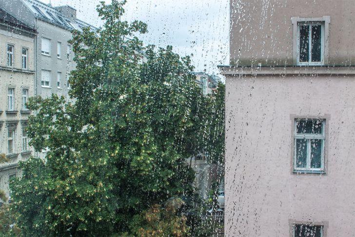 Regen in Wien (c) STADTBEKANNT