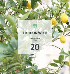 20 Tagestipp Zitronen (c) STADTBEKANNT