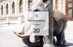 21 Tagestipp Elefant (c) STADTBEKANNT