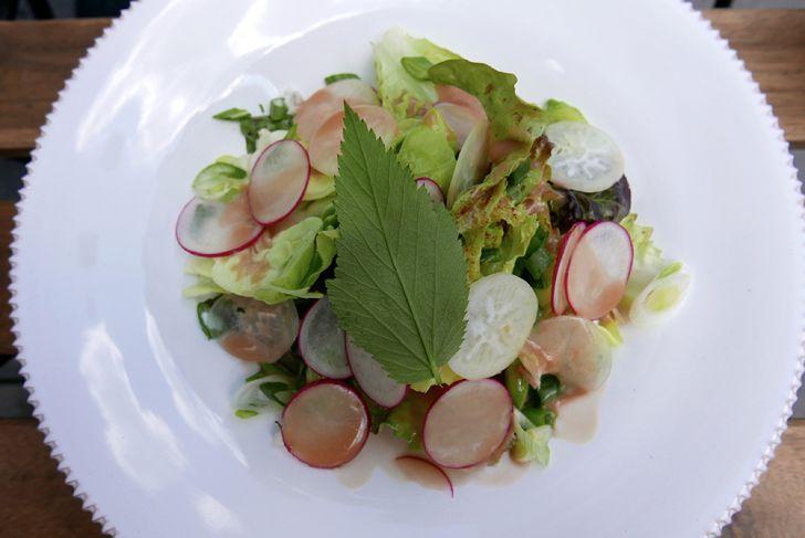 Bistro Restaurant Roots Salat (c) STADTBEKANNT Wetter-Nohl