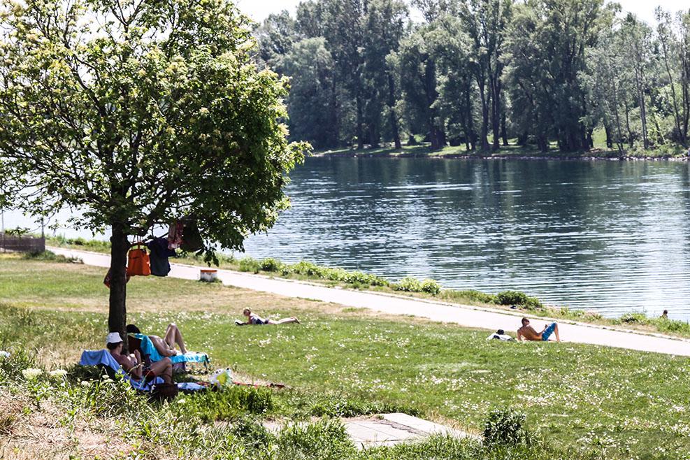 Donau Wasser Sommer (c) STADTBEKANNT