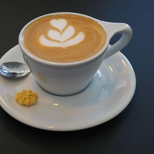 GOTA Coffee Experts Kaffee (c) STADTBEKANNT Pitzer