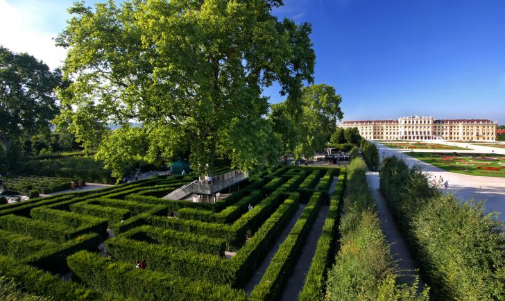 Schloß Schönbrunn Irrgarten - Julius Silver