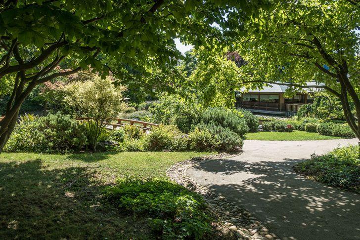 Setagayapark Bäume (c) STADTBEKANNT