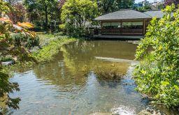 Setagayapark Teich Haus (c) STADTBEKANNT