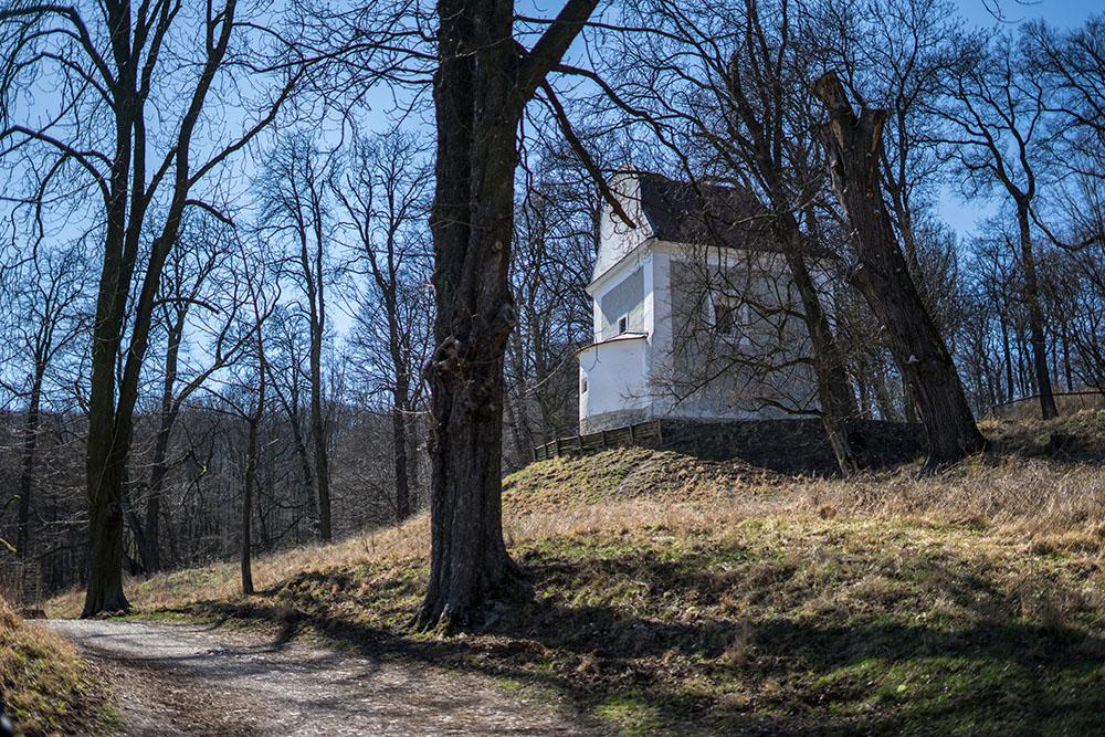 Lainzer Tiergarten Kapelle Wanderung (c) STADTBEKANNT Zohmann