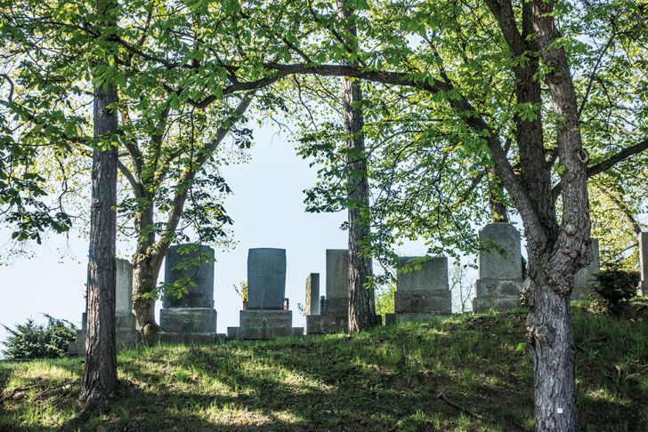 Friedhof Ottakring (c) STADTBEKANNT