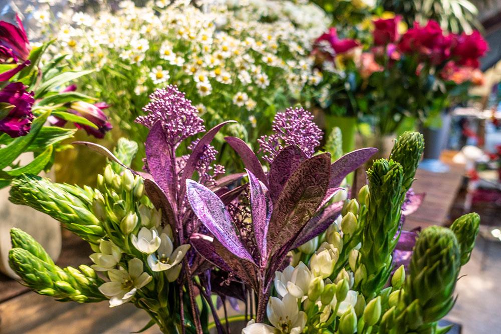 Blumen Stadler (c) STADTBEKANNT