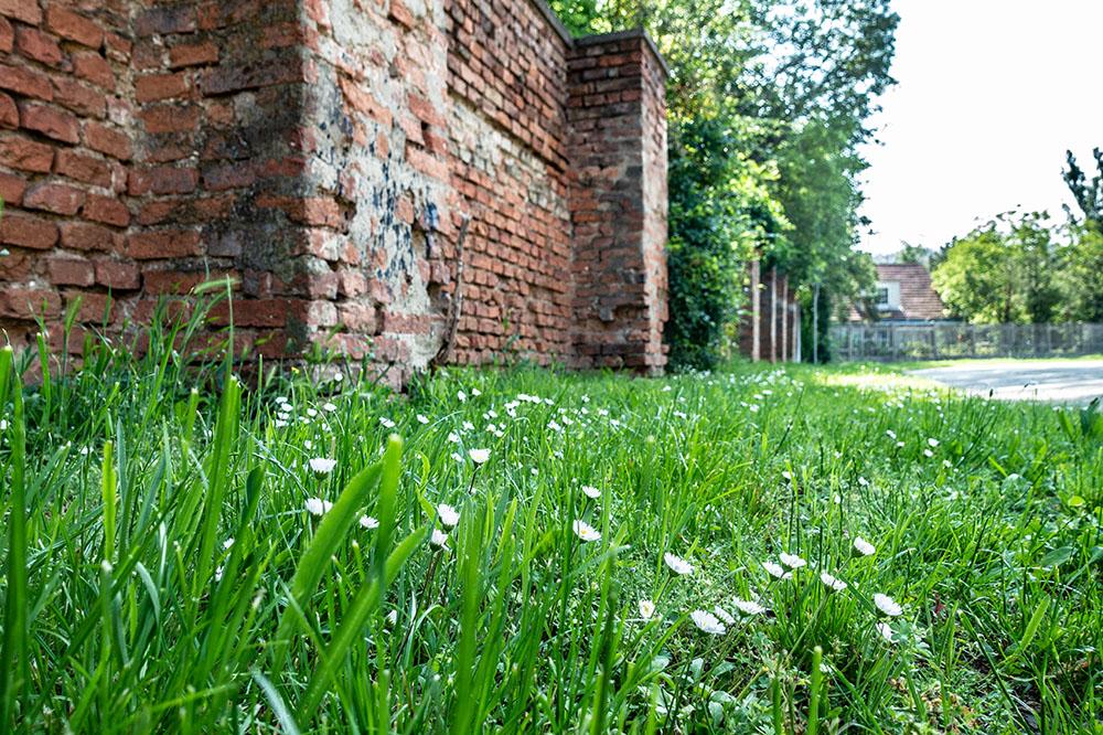 An der Schloßmauer (c) STADTBEKANNT