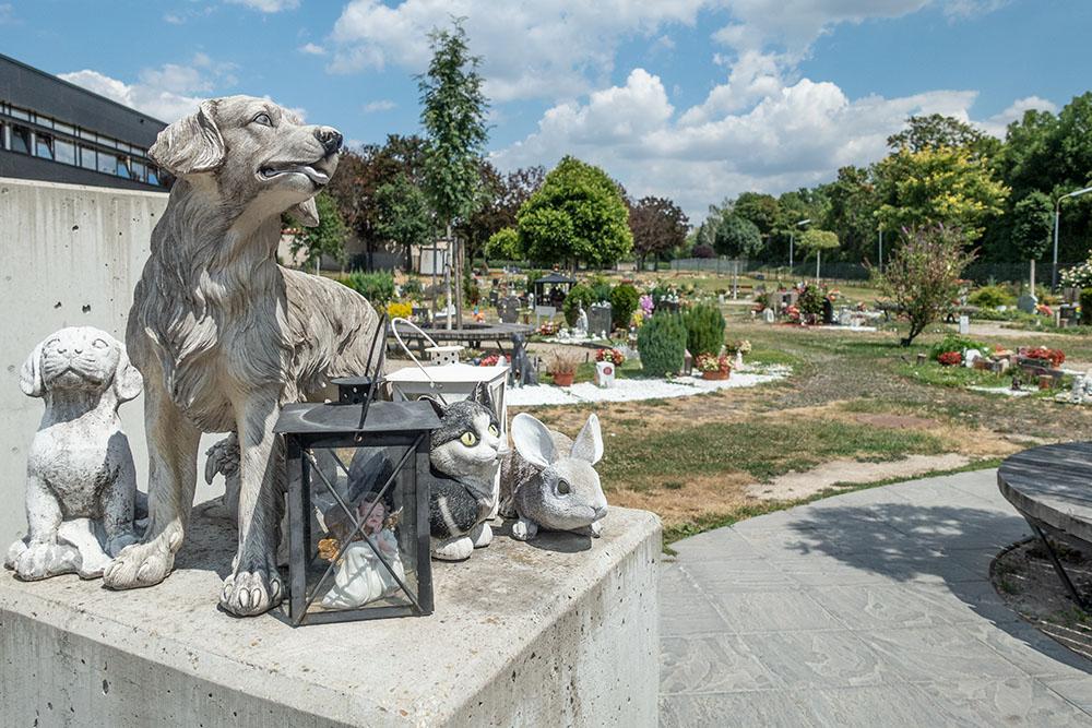 Tierfriedhof (c) STADTBEKANNT