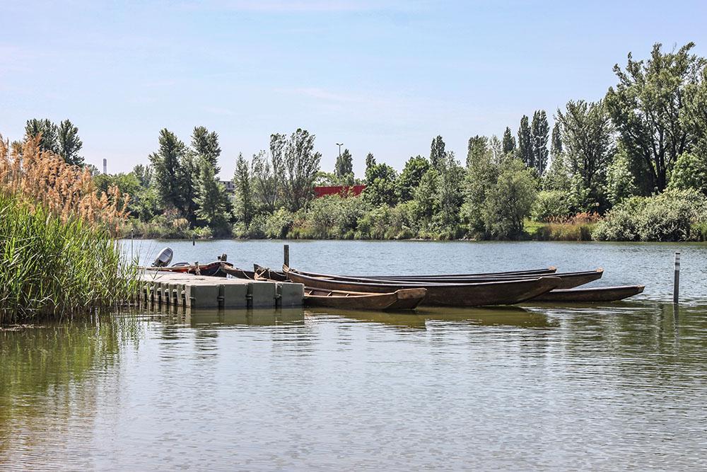 Boote Donau (c) STADTBEKANNT