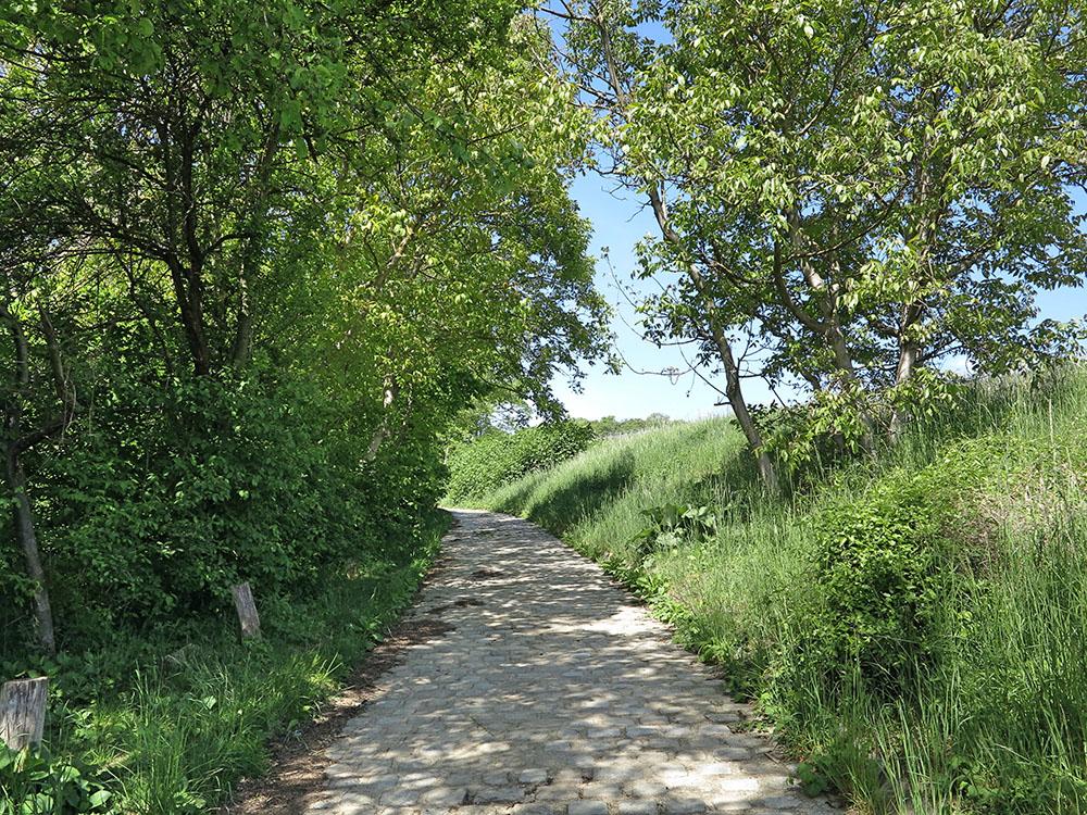 Pflasterstein-Weg (c) STADTBEKANNT Jungwirth