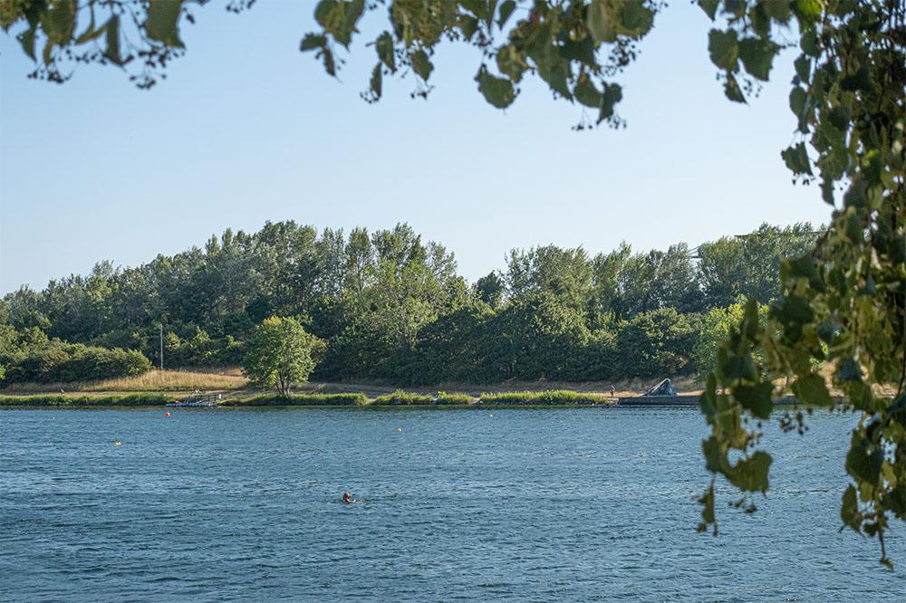 Lobau Donau (c) STADTBEKANNT